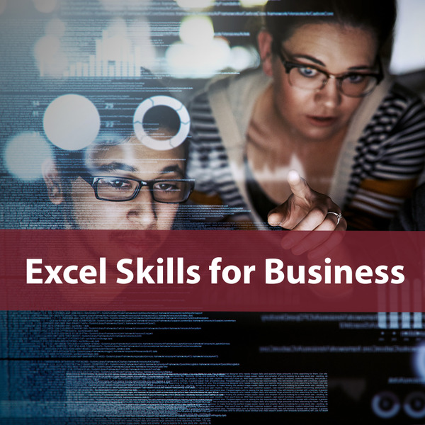 Excel Skills for Business Specialization